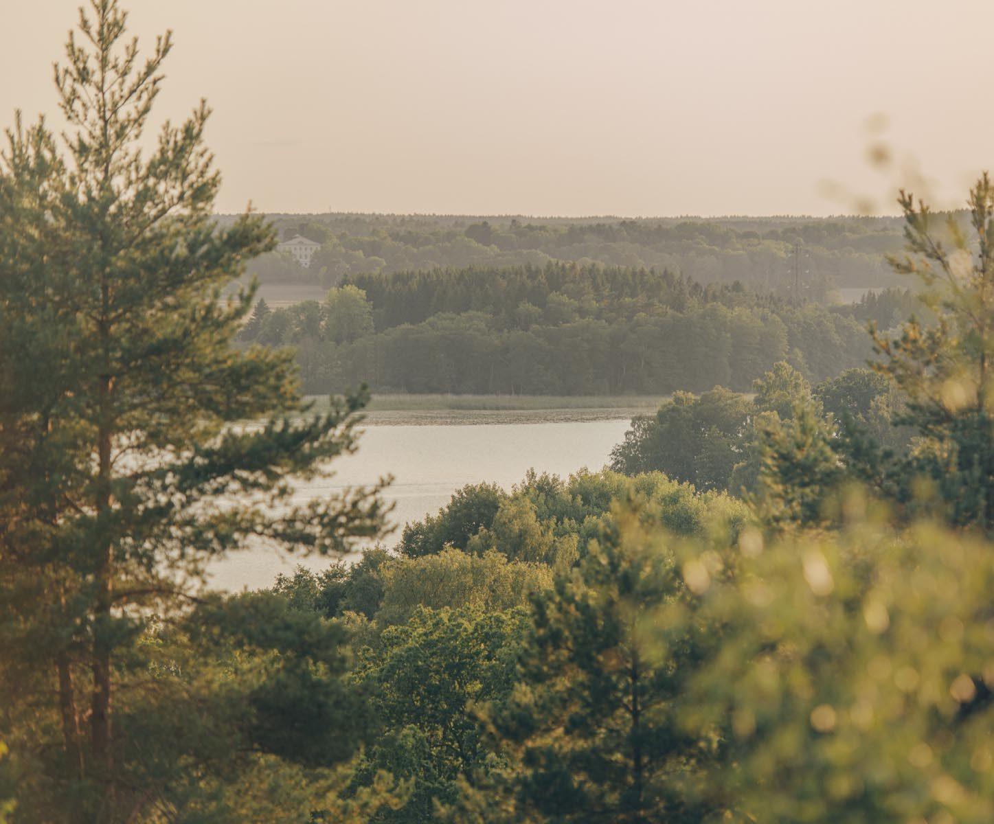 skog mälaren miljö natur