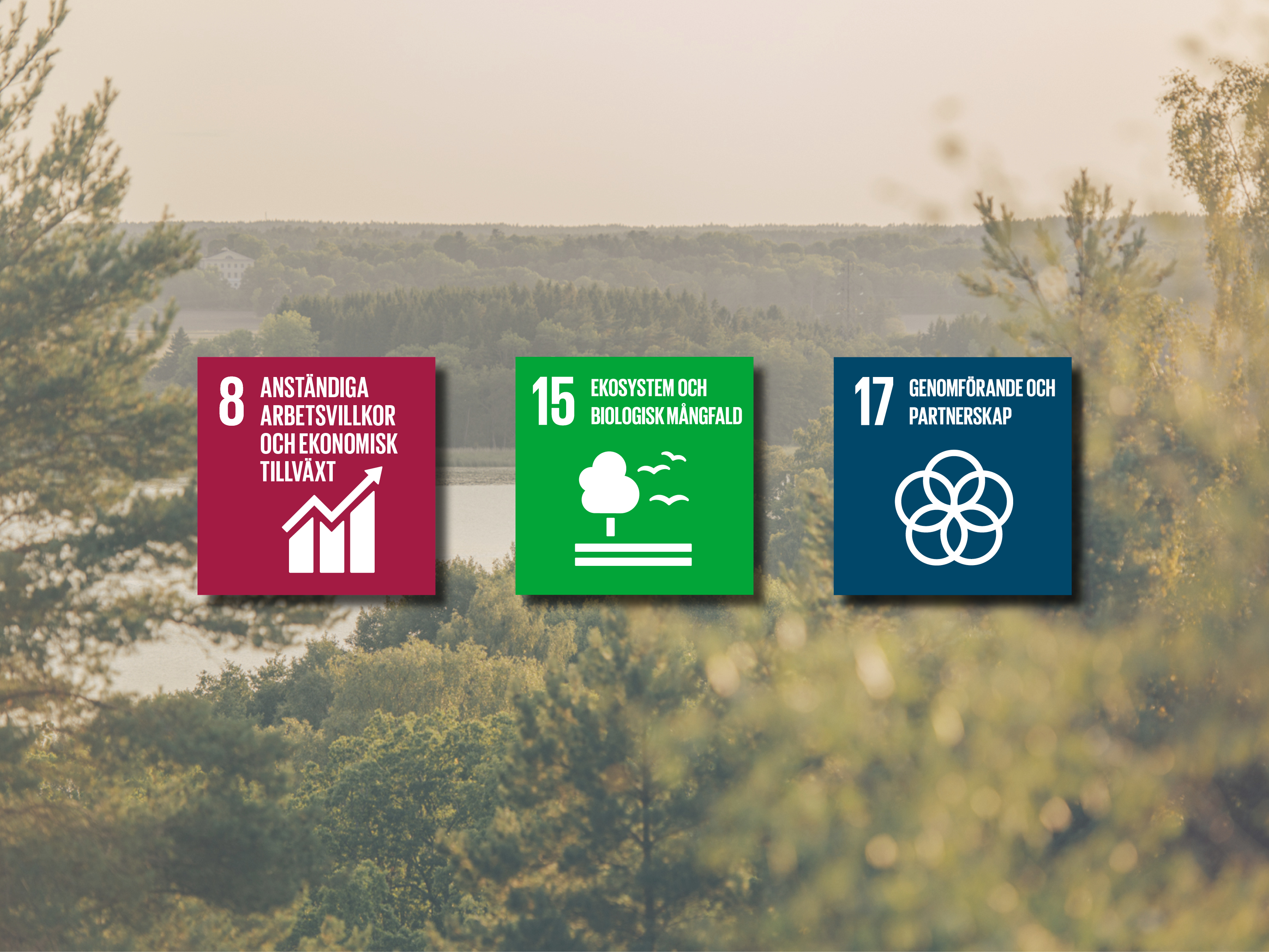 Primära Globala målen på Sigtunahöjden
