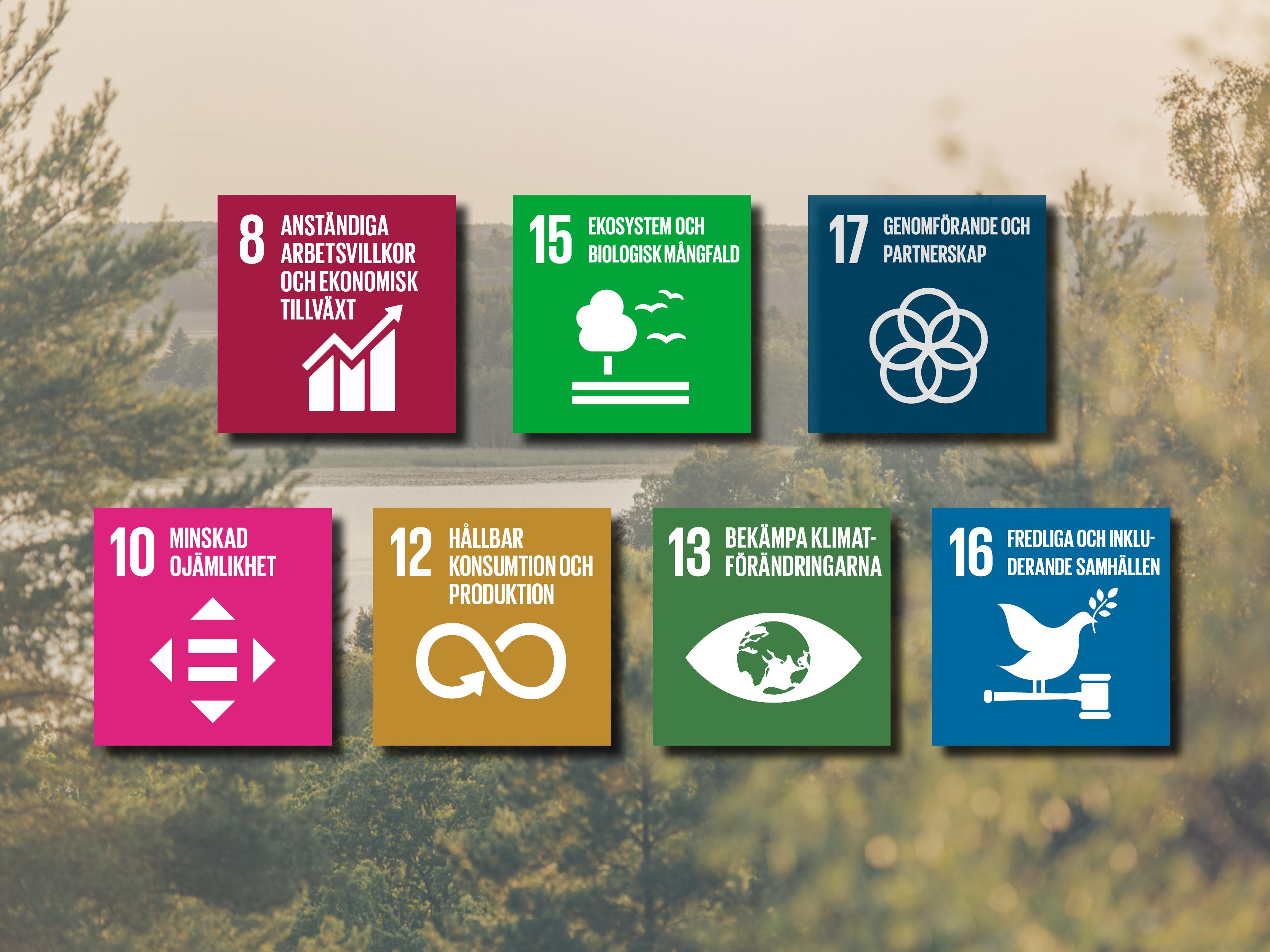 Alla Globala målet på Sigtunahöjden