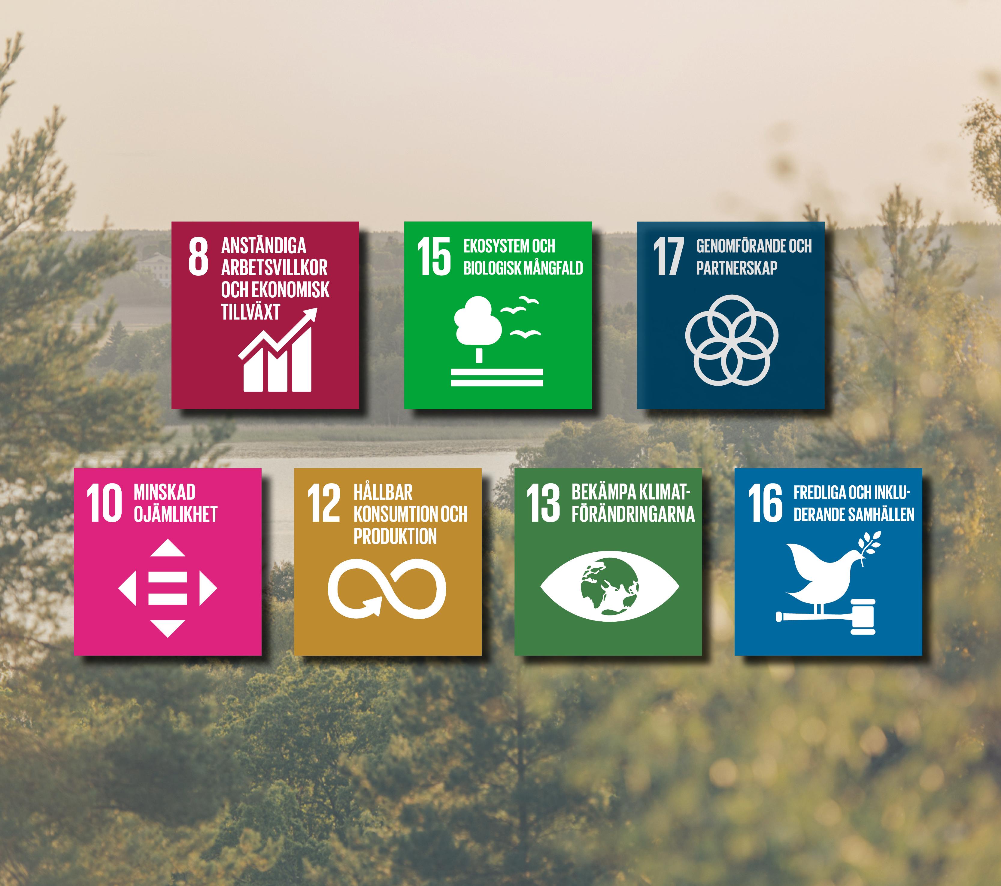 Alla Globala mål Sigtunahöjden